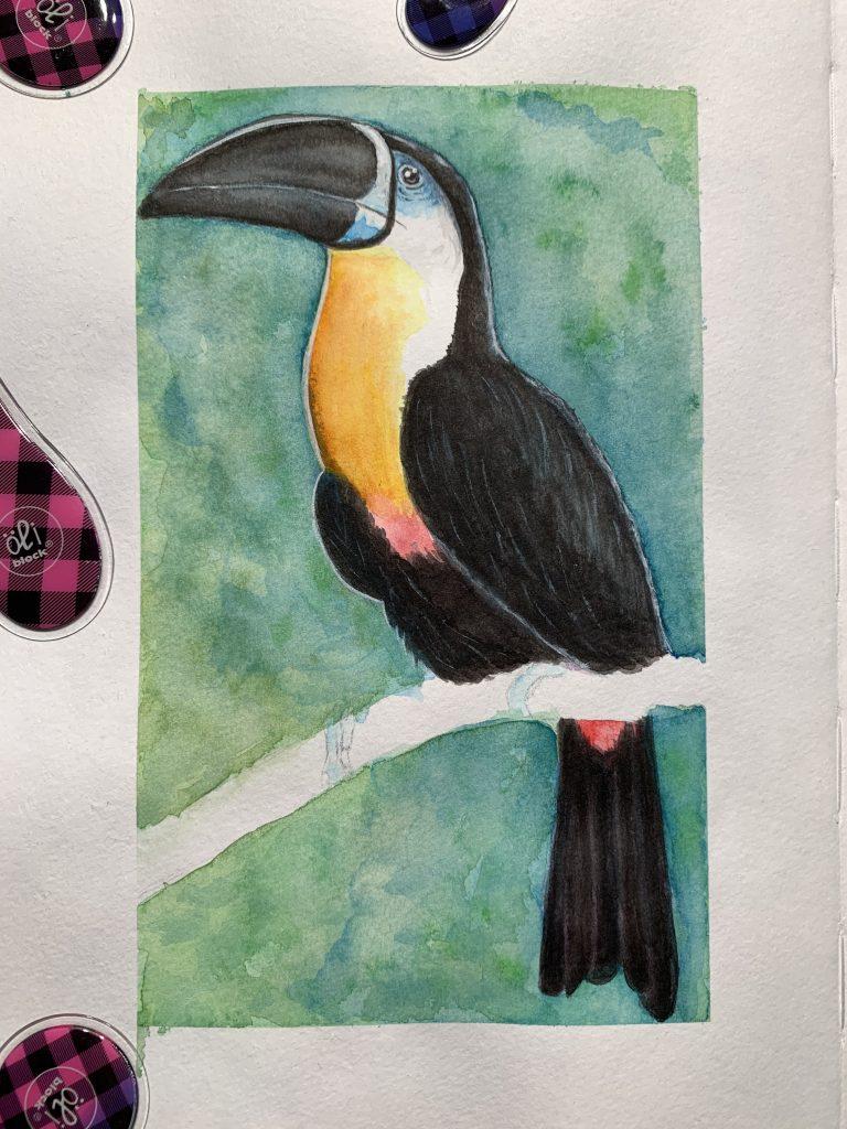 Tukan-Aquarell - ein Ausflug